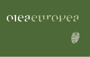 Olea Europea Osmisli Estetsko