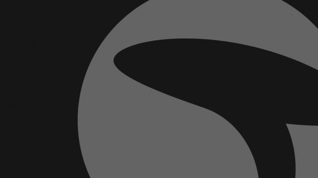 Termit celostna grafična podoba >> Termit visual identity